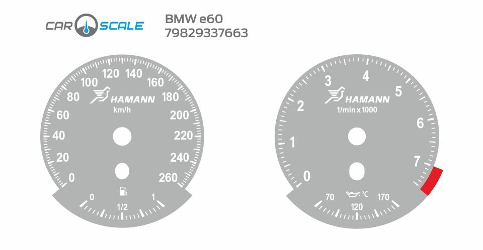 BMW E60 04