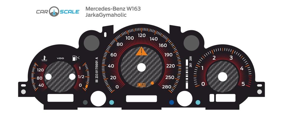 MERCEDES BENZ W163 05