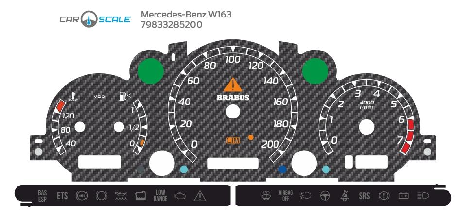 MERCEDES BENZ W163 06
