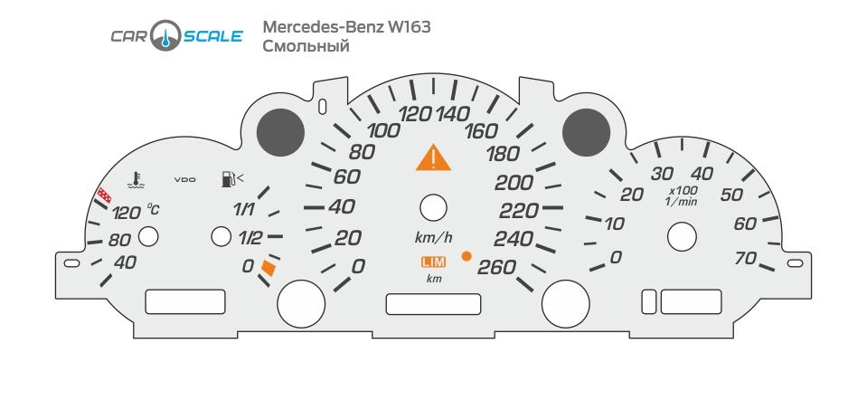 MERCEDES BENZ W163 12