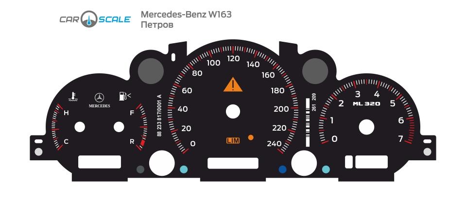 MERCEDES BENZ W163 07