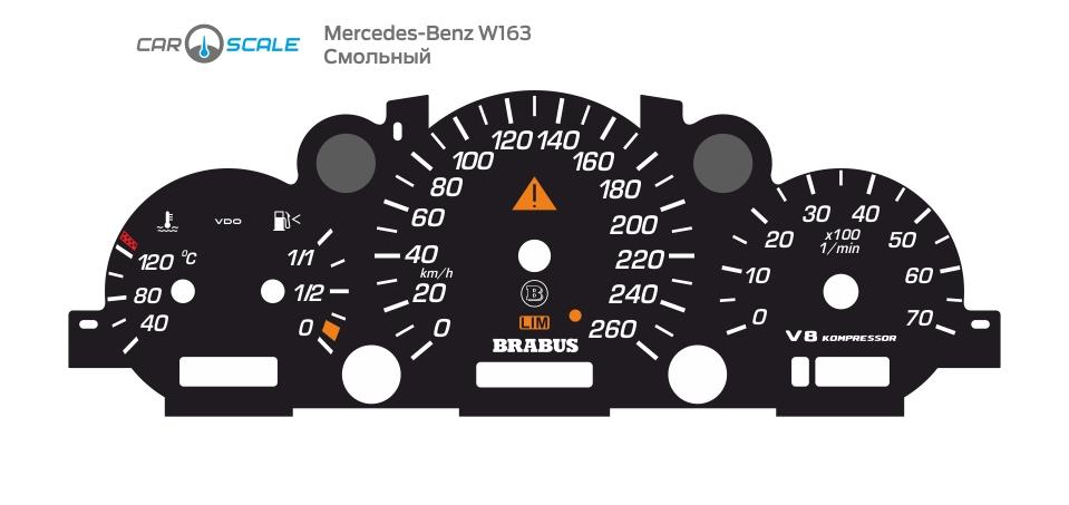MERCEDES BENZ W163 11