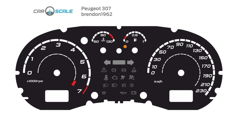 PEUGEOT 307 02